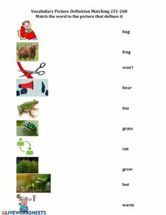 Interactive worksheet 251-261 Picture Definition Matching