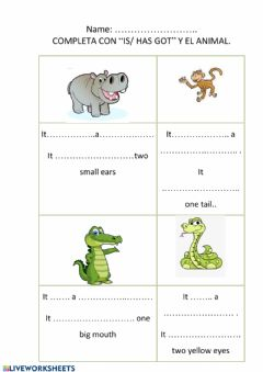 Interactive worksheet To be - To have got 2
