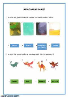 Interactive worksheet Amazing Animals! habitats - can-can't