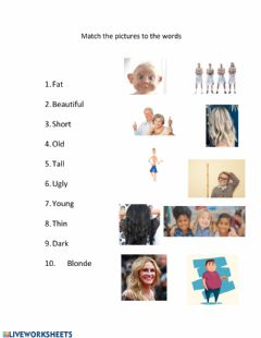 Interactive worksheet Appearance adjectives