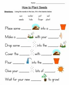 Interactive worksheet How to Plant Seeds