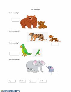 Interactive worksheet Big and Small