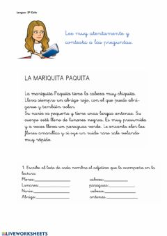Interactive worksheet Comprensión lectora