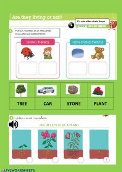 Interactive worksheet Living- non-things things