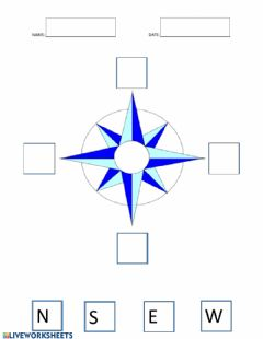 Ficha interactiva Compass Rose