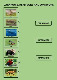 Ficha interactiva Nutrition and reproduction of animals