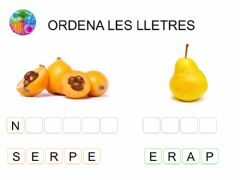 Interactive worksheet 03-Ordenar-lletres