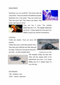 Ficha interactiva Seahorses and turtles