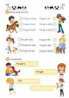 Interactive worksheet Have got & pets II