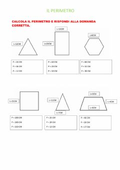 Interactive worksheet Perimetro poligoni