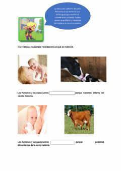 Interactive worksheet La vaca