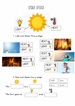 Interactive worksheet The Sun