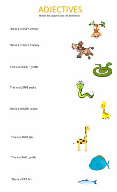Interactive worksheet Adjectives and animals