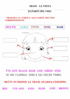Interactive worksheet Il viso  - The face