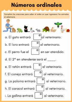 Interactive worksheet Números ordinales