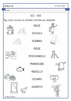 Interactive worksheet Sci  e sce