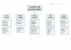 Ficha interactiva Unit 3 Living Things Classification. Kingdoms