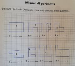 Interactive worksheet Perimetro