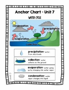 Ficha interactiva SCI-Wednesday (water cycle day 3)