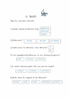 Interactive worksheet Comprension lengua castellana