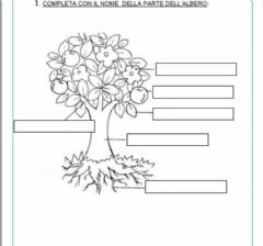 Interactive worksheet L'albero