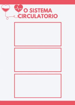 Interactive worksheet Vídeos sistema circulatorio