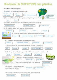 Interactive worksheet La nutrition des plantes