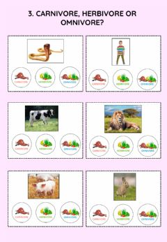 Interactive worksheet Nutrition of animals