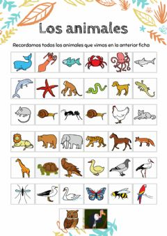 Interactive worksheet Animales 2