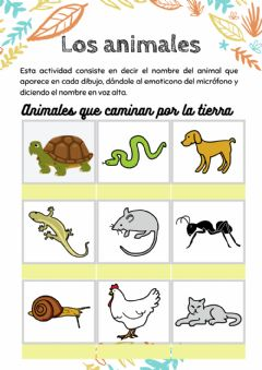Interactive worksheet Animales 1