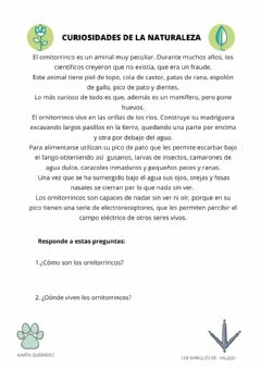 Interactive worksheet Lectura naturaleza