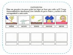 Interactive worksheet Facemos pan