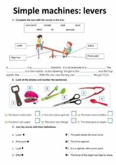 Interactive worksheet Levers