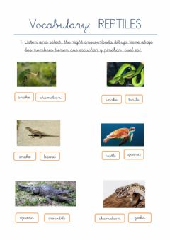 Interactive worksheet Reptile