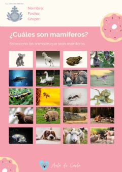 Interactive worksheet Los mamíferos