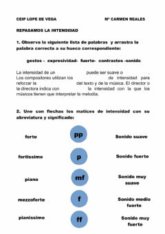 Ficha interactiva Matices de intensidad
