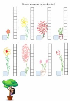 Interactive worksheet Mesura les flors