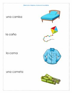 Interactive worksheet Consonante c