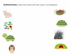 Interactive worksheet Animals Homes