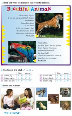 Interactive worksheet Beautiful Animals