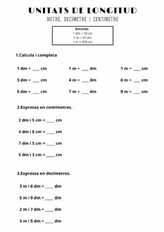 Interactive worksheet Unitats de longitud (I)