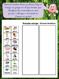 Interactive worksheet Agrupa los animales