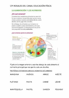 Interactive worksheet Nutrientes y alimentos