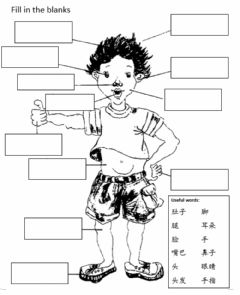 Interactive worksheet Body Part 身体部位 (revision)