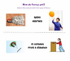 Interactive worksheet How do forces act?