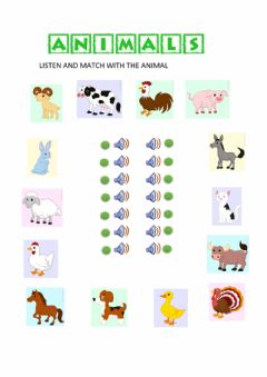 Interactive worksheet Animals 1