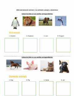 Interactive worksheet Wild and domestic animals- part 01