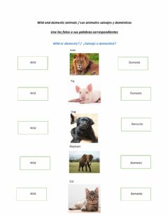 Interactive worksheet Wild and domestic animals- part 02