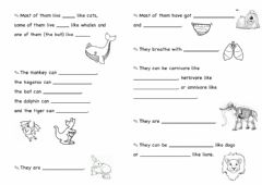 Interactive worksheet Mammals