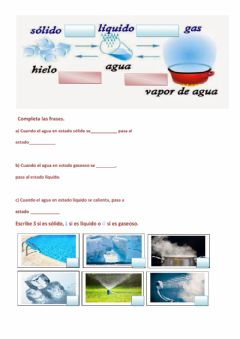 Interactive worksheet Estados del agua